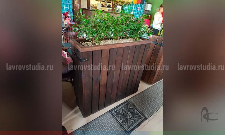 Вариант озеленения для летнего кафе